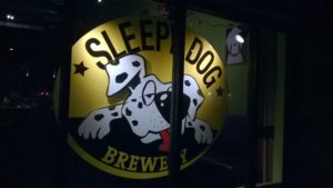 SLEEPY Dog Logo